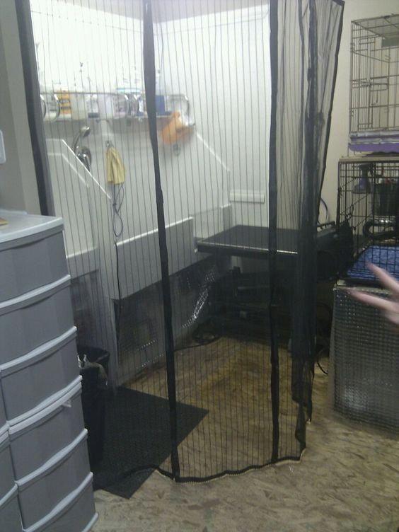 Affordable Dog Training Near Me #WhyDogPeesOnBed | Dog ...