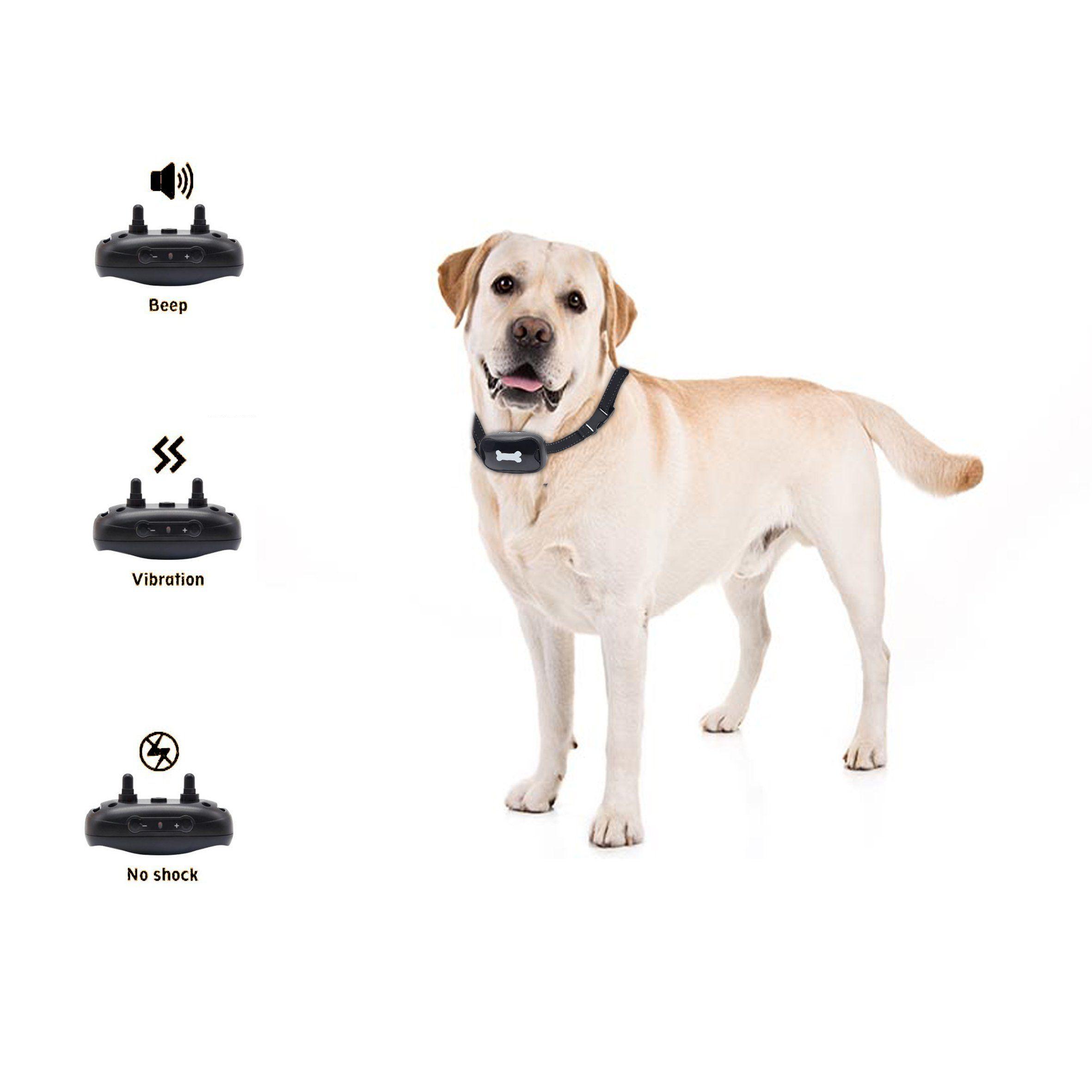 Bow2wow Dog Bark Collar A 2018 New Versiona Premier Pet Bark