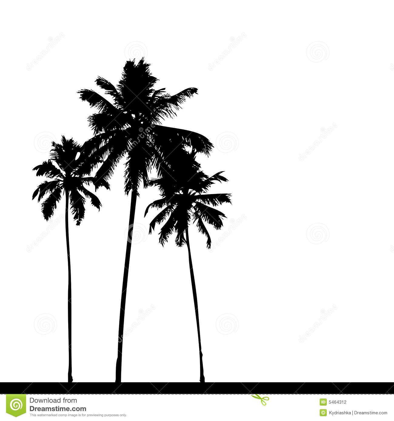 noir-de-silhouette-de-palmier-5464312.jpg (1300×1390)