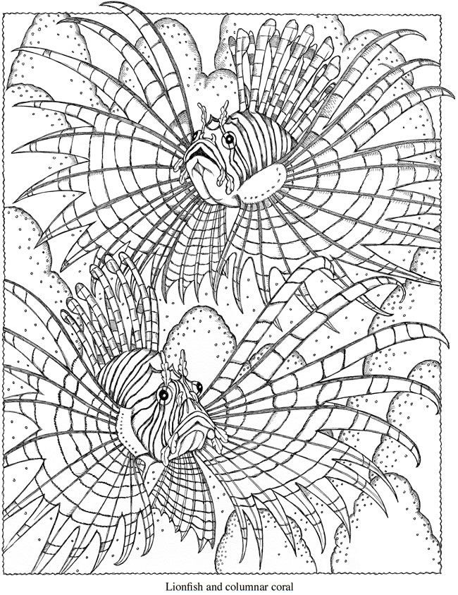 Lionfish coloring page from Dover | Coloring Pages | Pinterest ...