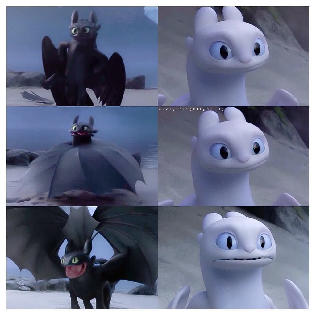 I honestly don't know who I feel more sorry for: Toothless or the