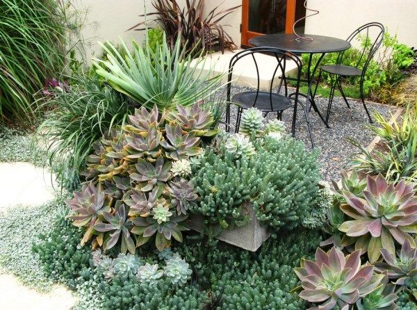 The Best Outdoor Plants For Shaded Areas Succulent Garden Design
