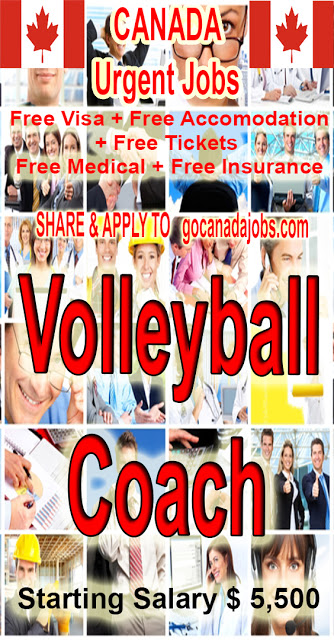 Volleyball Coach Job Search In 2020 Jobs For Teachers Job Career Assistant Jobs