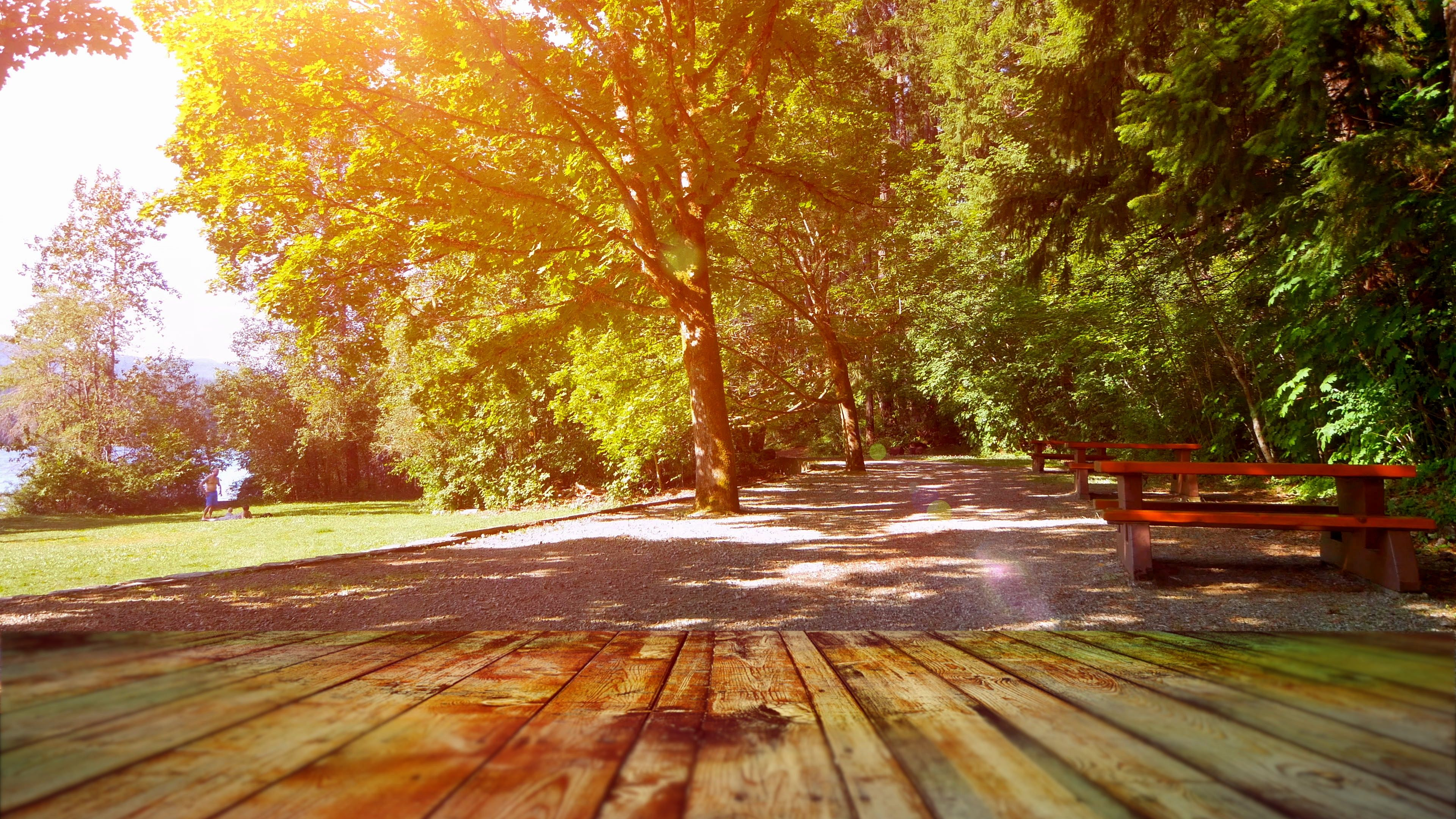 Park Picnic Table Nature Background, Outdoor Table Top Design, Nature Grass  Tree Stock Footage,#Nature#B… | Outdoor table tops, Nature backgrounds,  Table top design