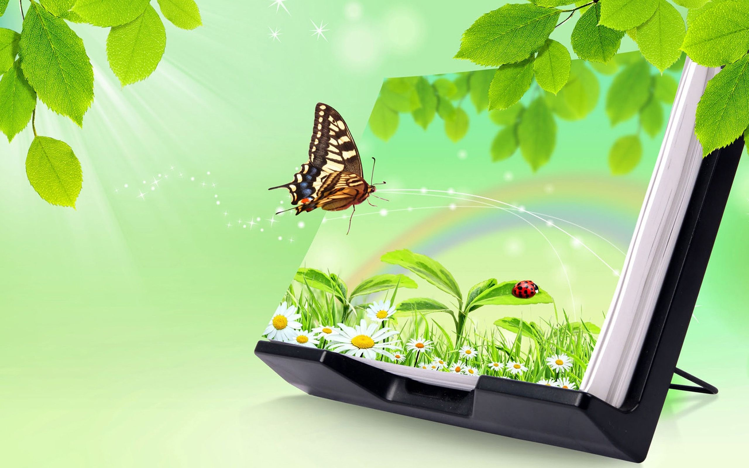 3d images of nature for desktop background with butterfly and