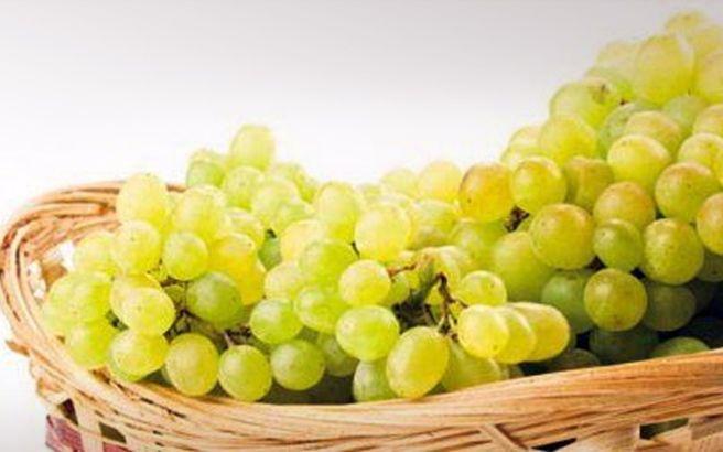 Γνωρίστε τα ευεργετικά συστατικά του σταφυλιού - http://www.daily-news.gr/health/gnoriste-ta-eyergetika-systatika-tou-stafyliou/