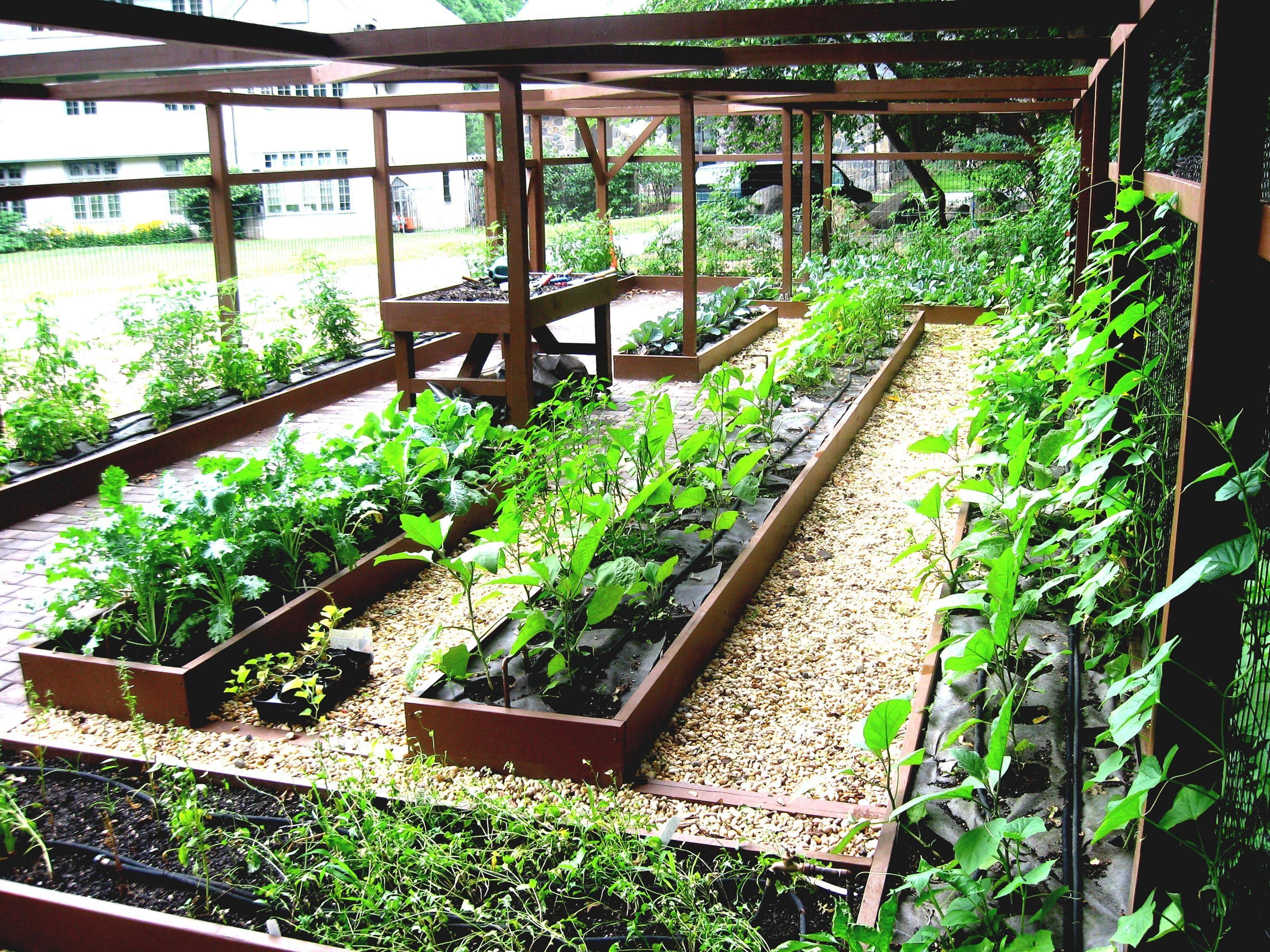 10 Minimalist Creative Garden Ideas To Enhance Your Small ...