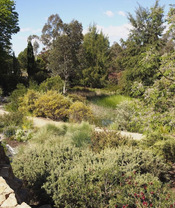 Walcott Garden (With Images)