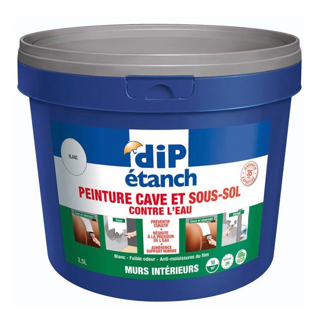 Peinture Special Cave Et Sous Sol Murs Interieurs Dip Blanc 2 5l Sous Sol Cave Sol