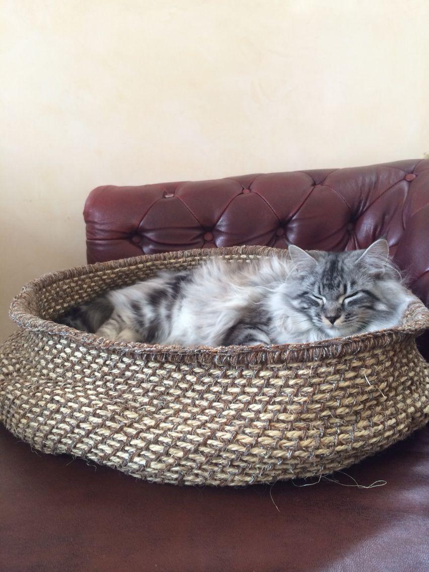Katzenkorb Gehäkelt Crochet