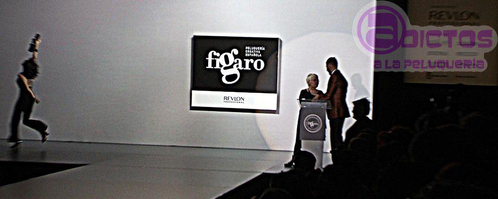Entrega de Premios Fígaro 2014