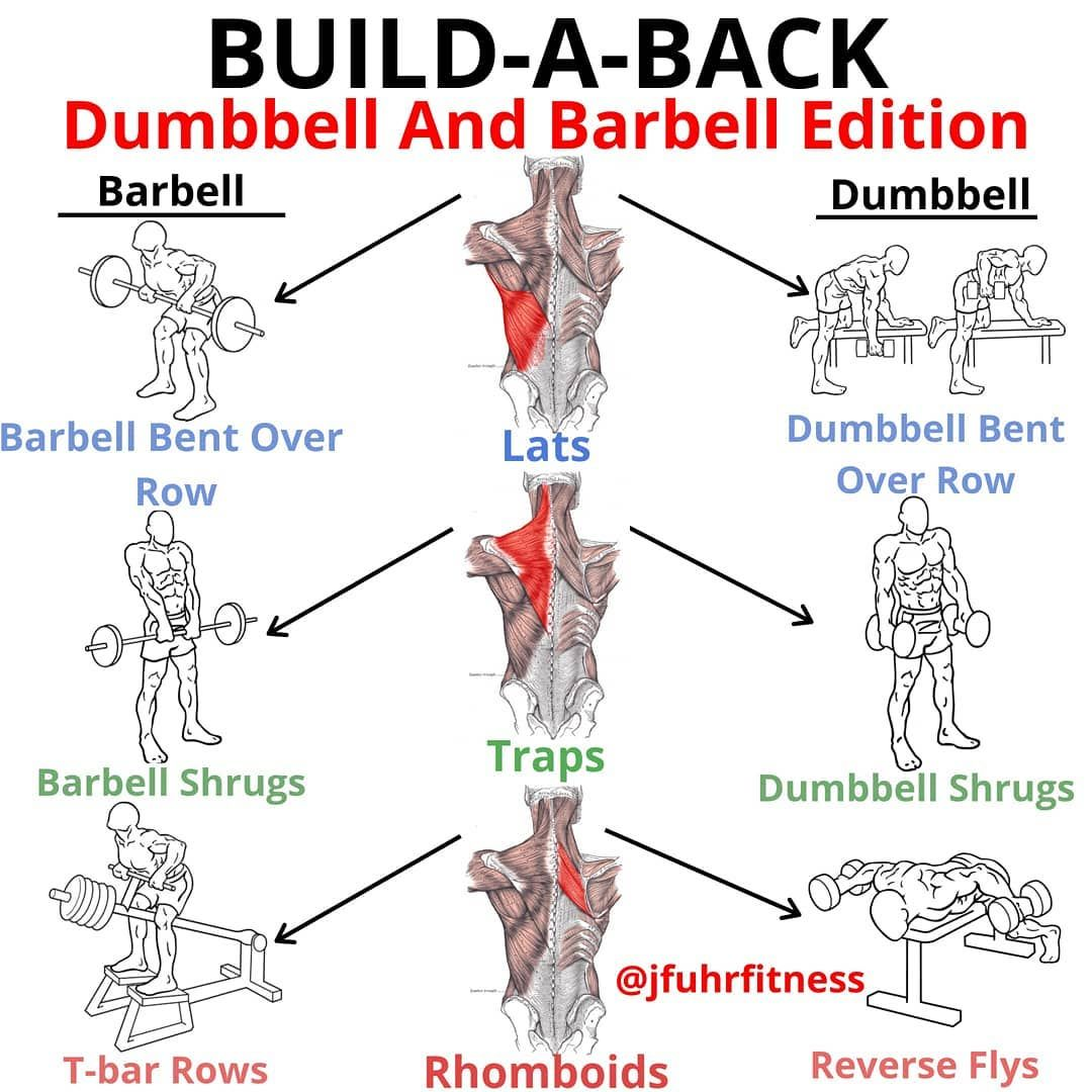 The Only Back Workout You Need for That Perfect V-Shape - GymGuider.com