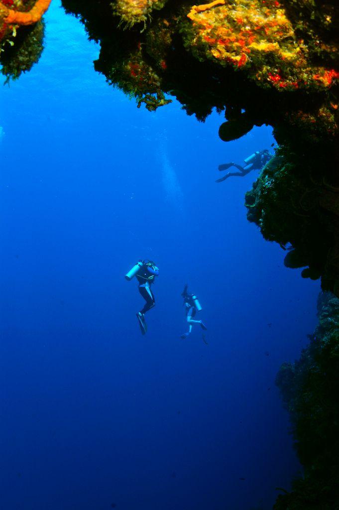 Gran Scuba Diving Riviera Maya, 77710, Mexico +52 1 984 115 4058
