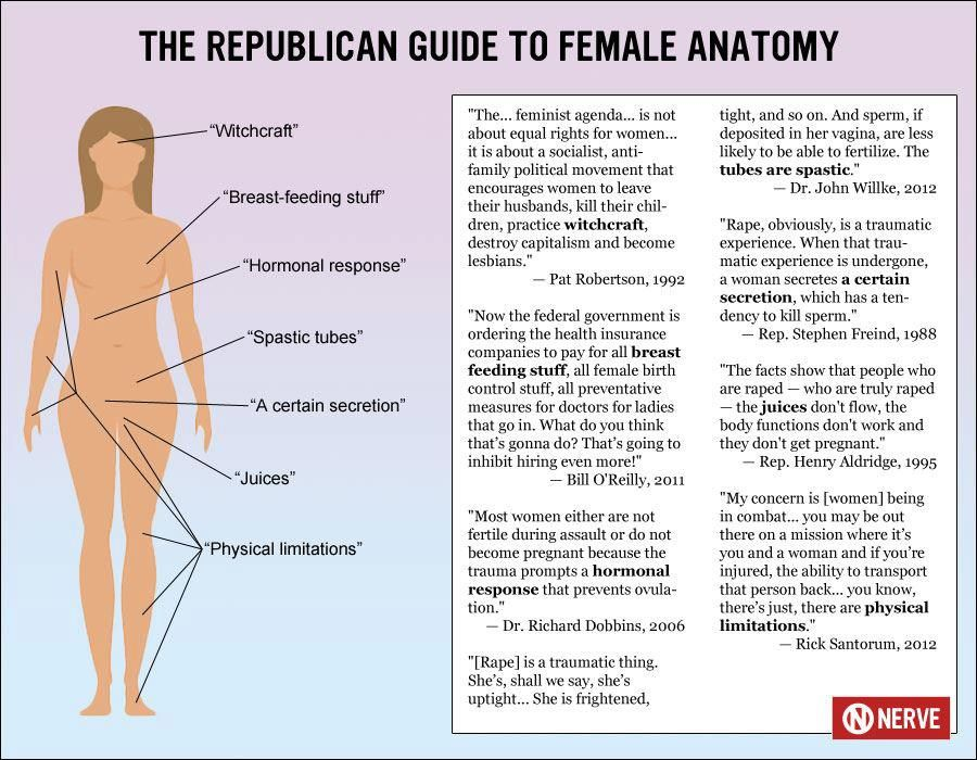 The USA Republican Guide to Female Anatomy - only partially humorous ...