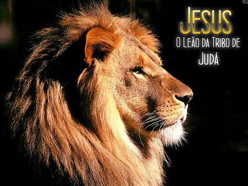 Jesus O Leao Da Tribo De Juda Frases De Fe Paz Amor Felicidade