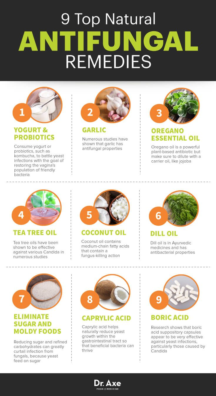 Candida Diet Food List South Africa