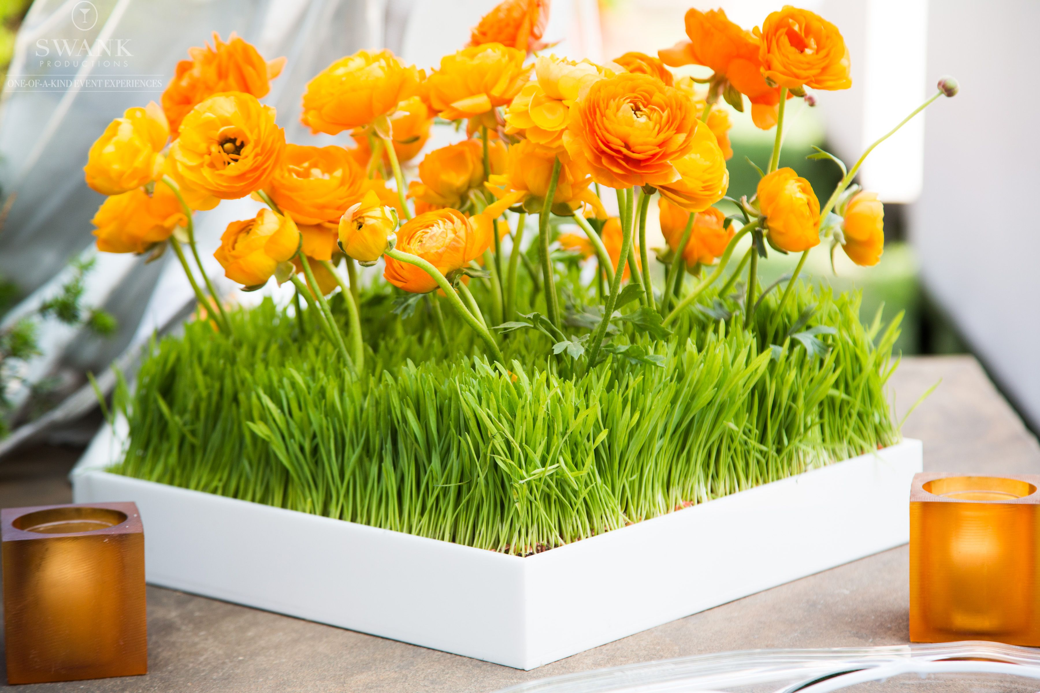 Planned, Designed & Produced by www.swankproductions.com orange capital #swankproductions #corporateparty #620loftandgarden #chic #party #eventplanner #bestofthebest #nyc #reception #colorful #decor #lounge #fun #flowers #orange #ranunculus #ideas #inspiration #beautiful #grass #candles #manhattan