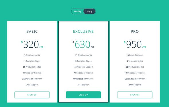 Responsive flip pricing table pricing pinterest pricing table responsive flip pricing table css table table template hosting website pricing table maxwellsz