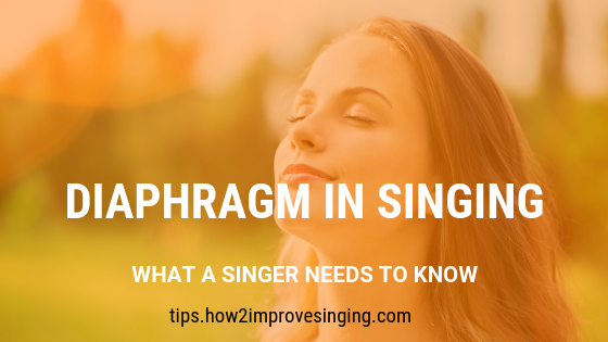 Diaphragm in Singing What You Need to Know Singing