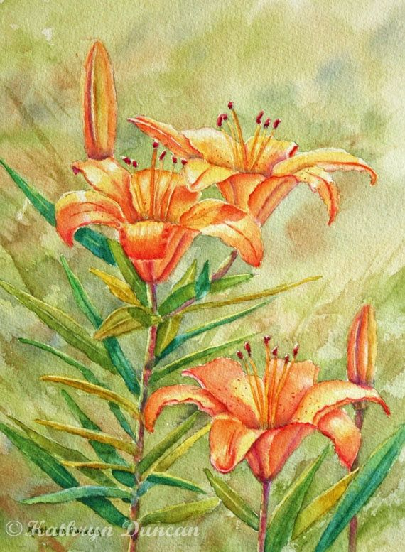 Lilies Original Watercolor Painting | Flower painting | floral ...