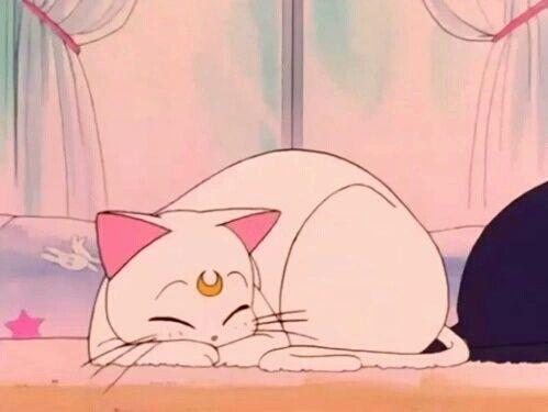 cat, sailor moon, and anime image #CatAnime #OilPaintingFashion -  cat, sailor moon, and anime image #CatAnime #OilPaintingFashion  - #anime #Cat #cathouse #CatAnime #gatosaesthetic #Gatosdibujos #gatostattoo #Image #moon #OilPaintingFashion #Sailor