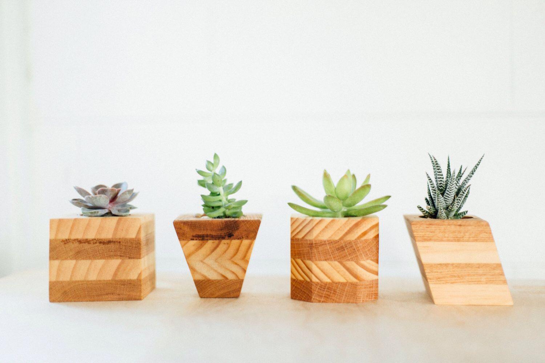 Wood Planters Geometric Succulent Pots Modern Cactus Planters
