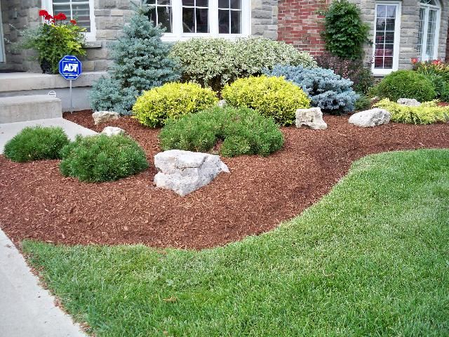 Swerving Garden Bed With Evergreen Shrubs Plants And Accent Rocks