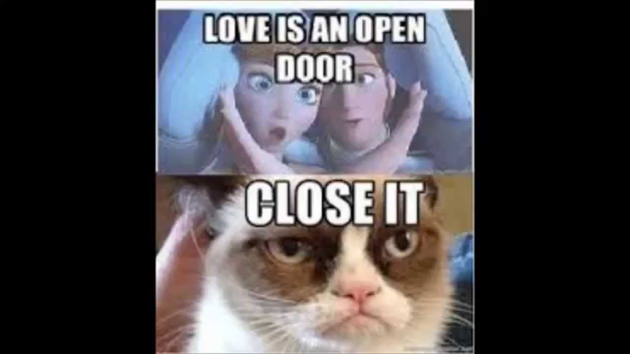 Funny Animal Memes Try Not To Laugh Funny Grumpy Cat Memes Grumpy Cat Quotes Funny Cat Memes
