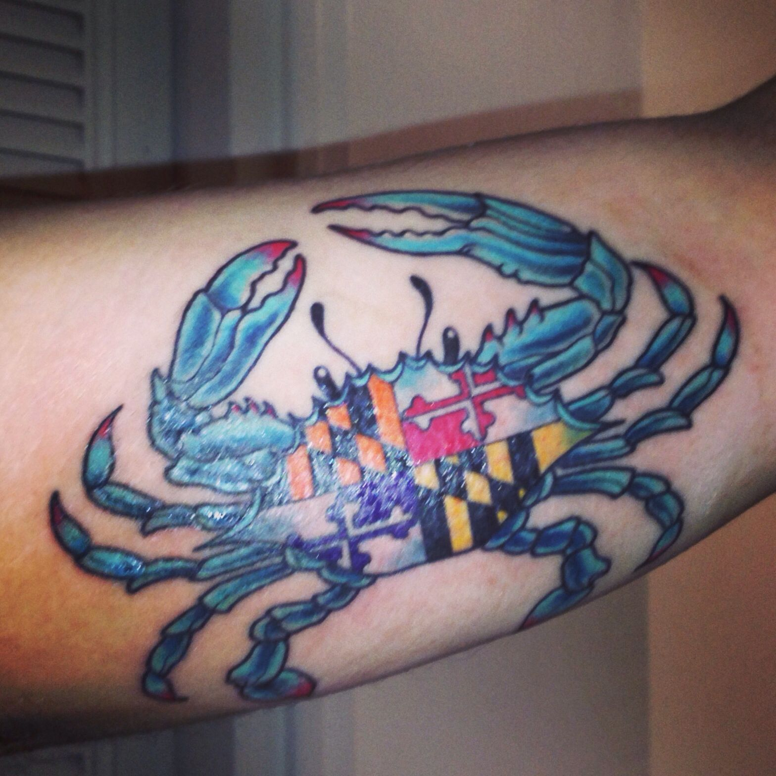 My maryland pride crab tattoo with ravens and orioles