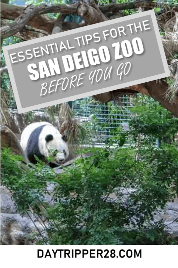 The Only Zoo Where A Two Day Pass Might Be Necessary San Diego Travel Visit San Diego San Diego Vacation