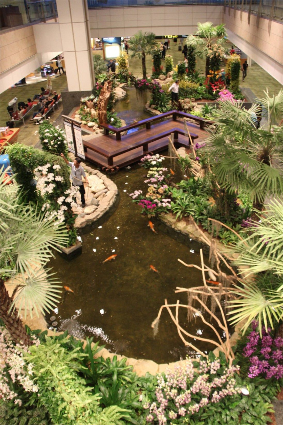Changi Airport Singapore Ten Top Things To Do Singapore Garden