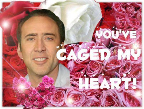 Funny Celebrity Valentines Card Nic Cage Jpg 500 379 Pixels