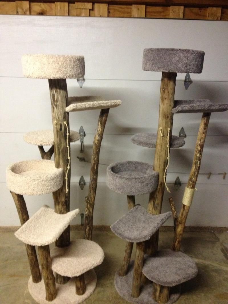 Cat tree with natural wood cats pinterest cat tree for Cat tree blueprints
