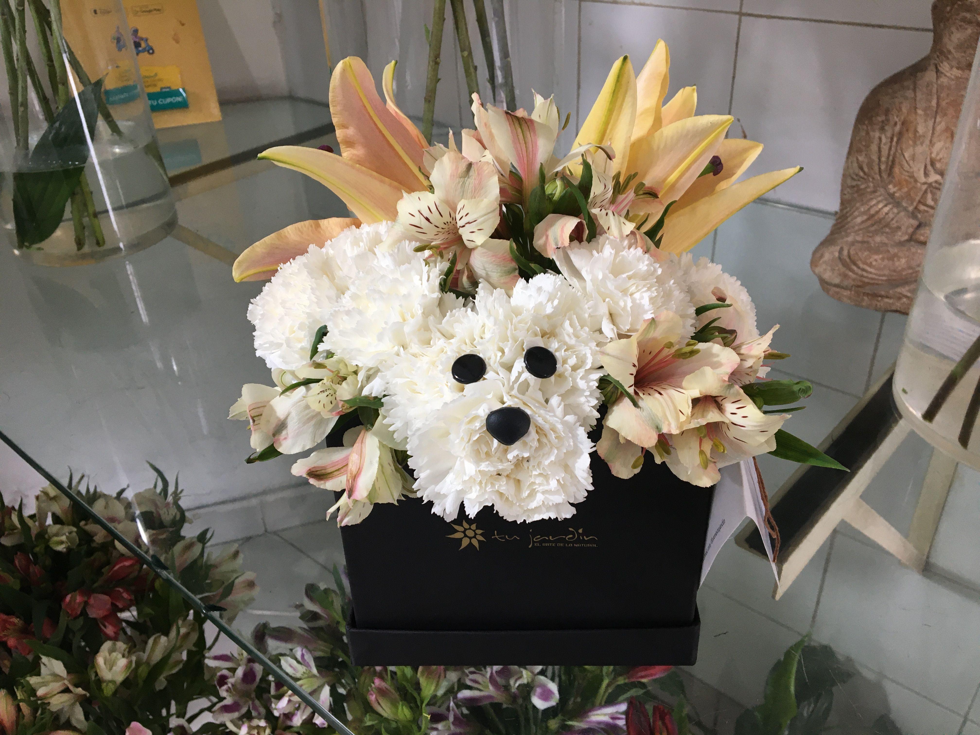 Caniche Perrito de flores naturales Flores, Floristería