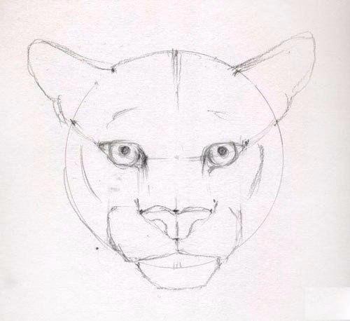 Puma Zeichnen Anleitung Dekoking Com 5 Zeichnen Anleitung Zeichenvorlagen Zeichnen Lernen