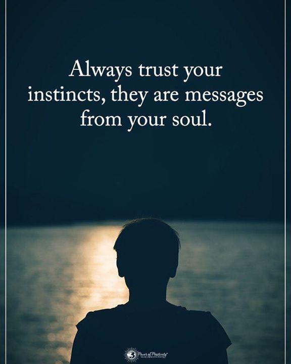 Always Trust Your Instincts Motivational Quotes For Life Trust Your Instincts Motivational Quotes