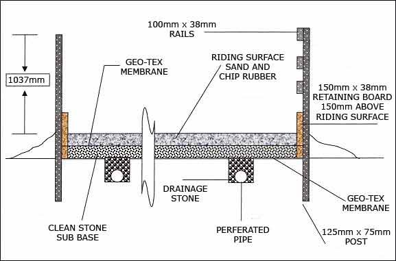 Horse cross section diagram wiring diagram sand school cross section diagram new house pinterest diagram rh pinterest com cross section view heart ccuart Image collections