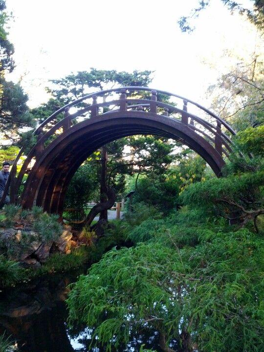 Japanese Tea Garden in San Francisco, CA see the Drum Bridge ...