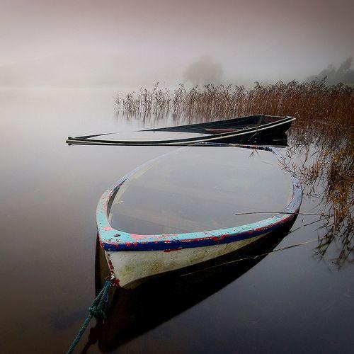david mould on flickr