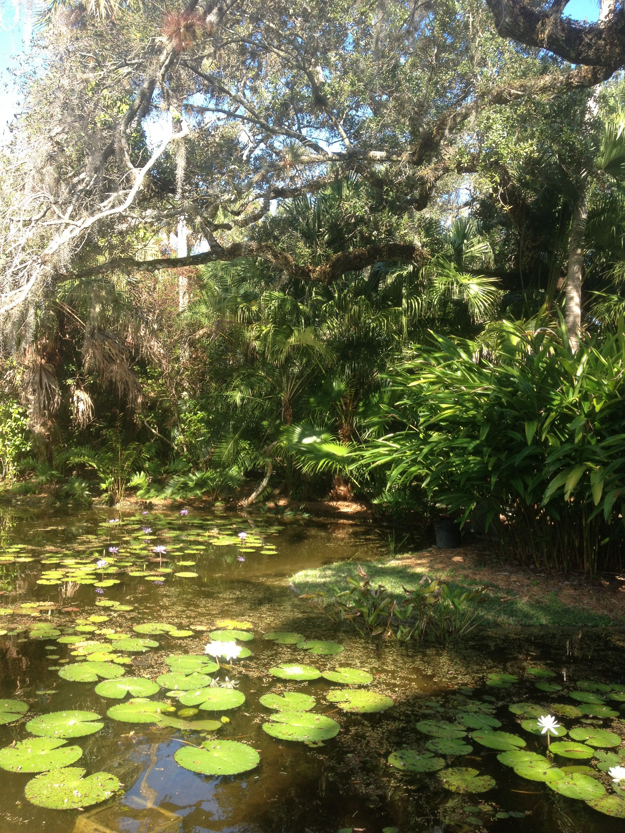 McKee botanical gardens Vero Beach Fl. Beautiful gardens and ...