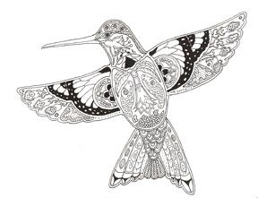 Hummingbird Coloring Pages | Follow Your Heart....: NEW STAMP LINE!