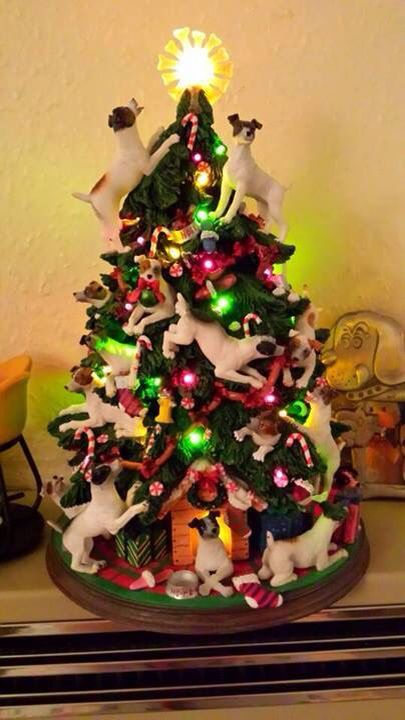 Jack Russell Christmas! - Jack Russell Christmas! Better Than People Jack Russell Puppies