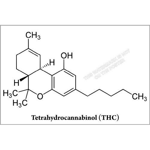 Thc Tattoo Designs: WE COULD USE THE MOLECULE INSTEAD