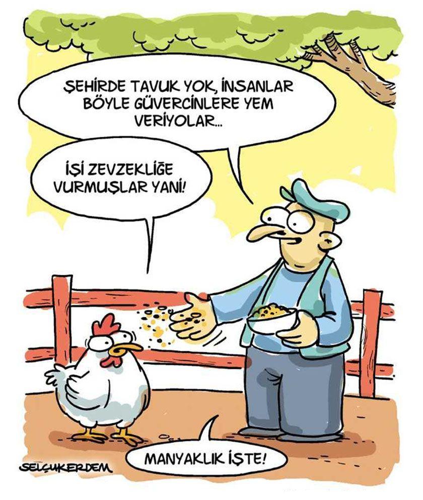 Selcuk Erdem Selcukerdem Selcukerdem Karikatur Mizah Cizgi Komik Penguen Penguendergi Karikatur Komik Seyler Komik