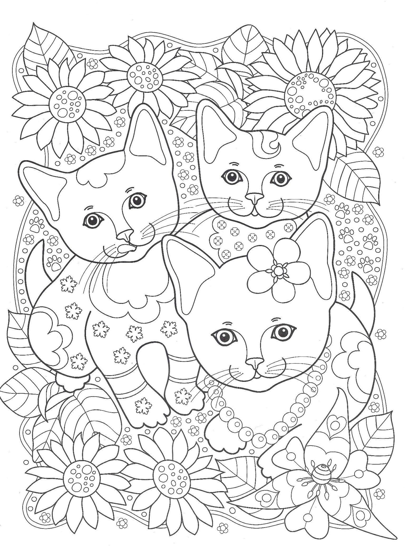 картинки с котами печатать