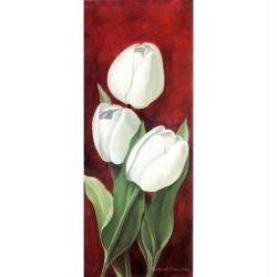 Image 3D Fleur - 3 tulipes blanches 20 x 50 cm