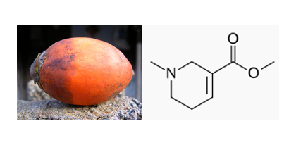 Nutty stimulant revealed as anticancer tool