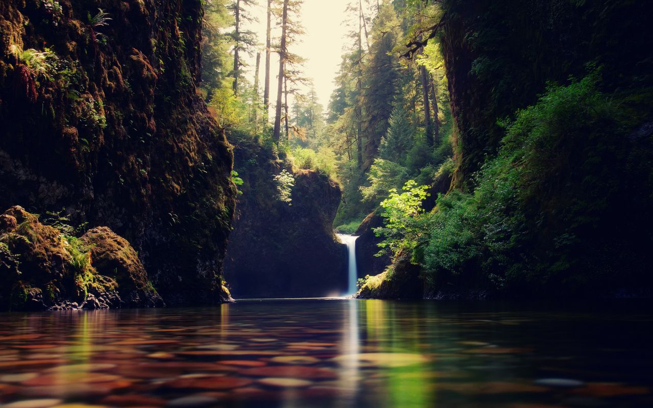 Forest waterfall wallpapers pictures photos images - Nature wallpaper vertical ...