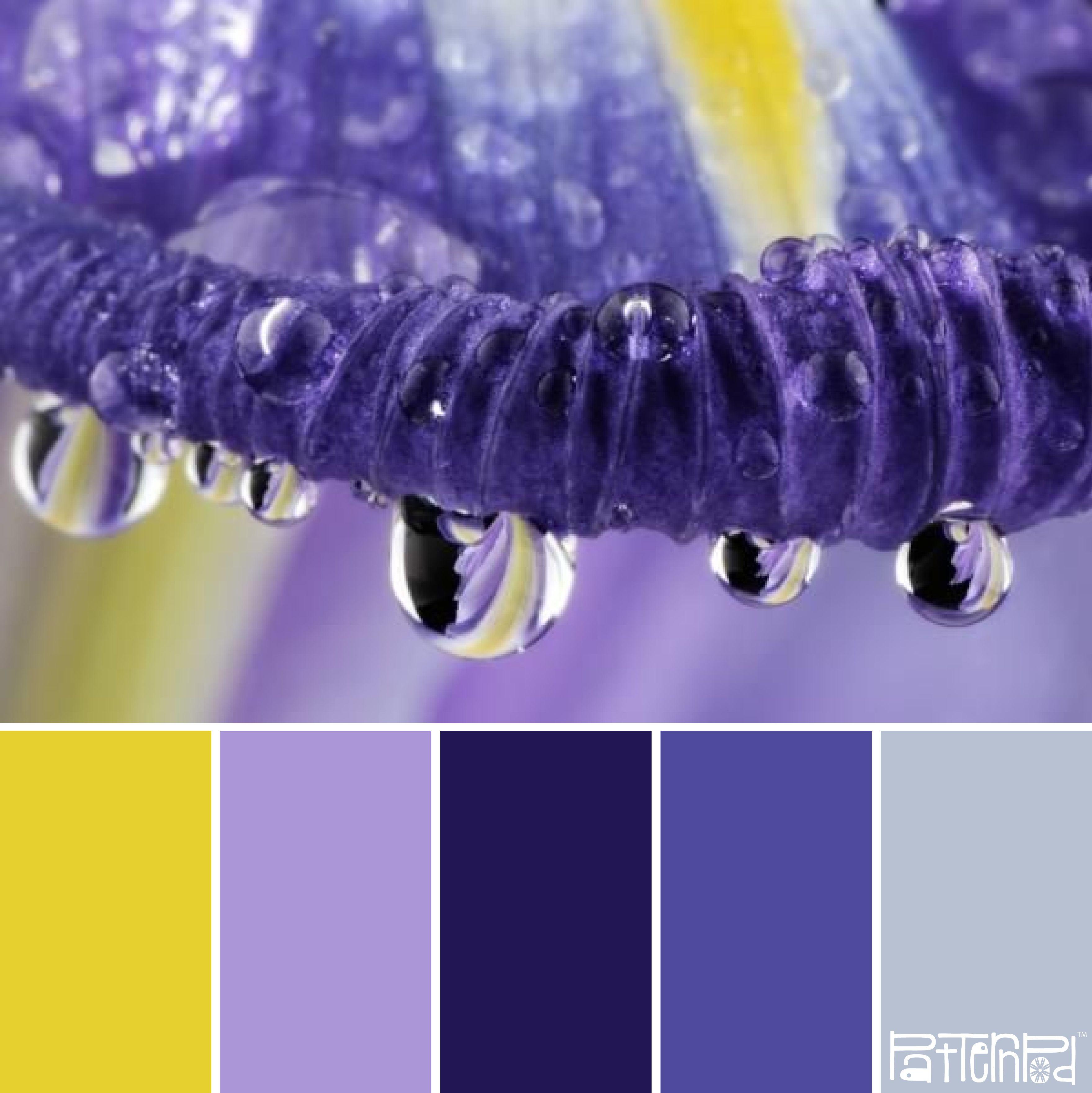 Morning dew #patternpod #patternpodcolor #color