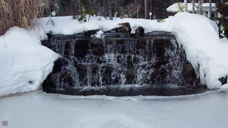 Winter Waterfall Scene At Main Koi Pond At Fairfield Garden Center Koi Pond Pond